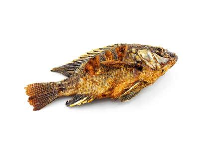 tilapia fried fish isolated on white background