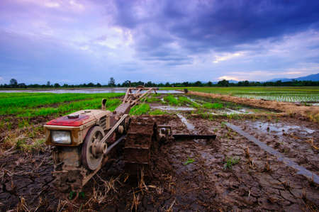 The rice fields and tractors of the villagers prepare to grow rice in the rainy season