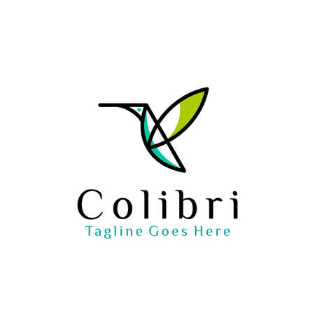 flying bird logo design template with linear concept style. vector illustration of hummingbird/colibri in outline style