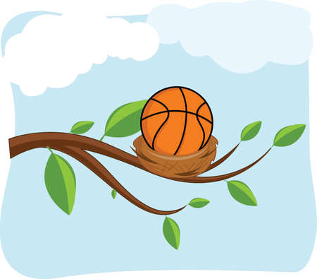 birds nest: Basketball in a birds nest on a tree branch with green leaves
