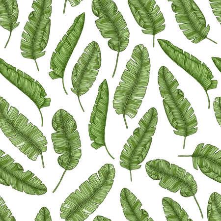 Tropische bananenbladeren naadloze patroon vectorillustratie