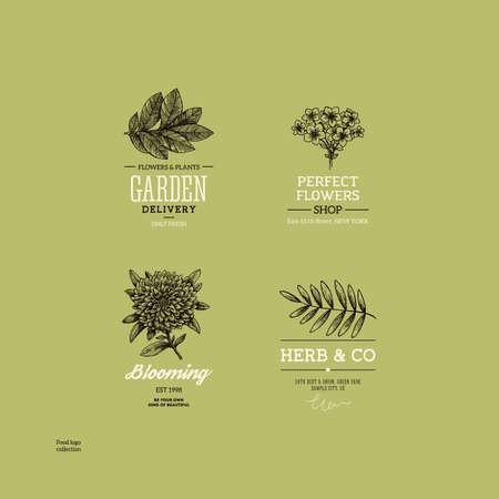 Vintage nature logo collection. Engraved logo set. Vector illustration