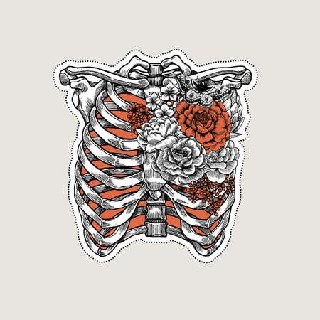 Tätowierung Anatomie Vintage Illustration. Rosen auf Rippen- und Kastenskelett. Standard-Bild - 87876763