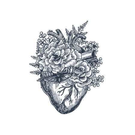 Tattoo anatomy vintage illustration. Floral anatomical heart. Vector illustration Illustration