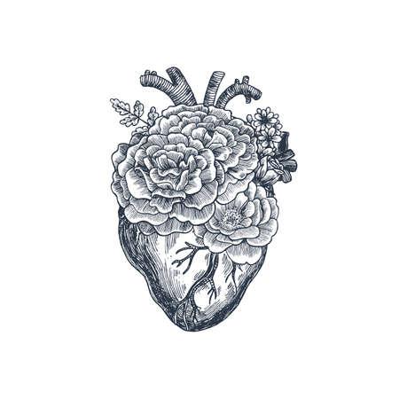 Tattoo anatomy vintage illustration; Floral romantic anatomical heart illustration