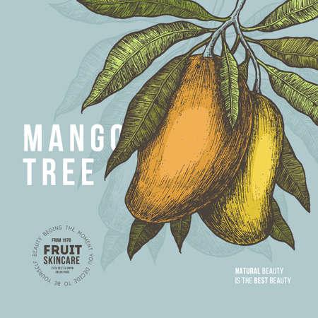 マンゴー ツリーのビンテージ デザイン テンプレートです。植物のマンゴー フルーツのイラストです。刻まれたマンゴー。ベクトル図  イラスト・ベクター素材
