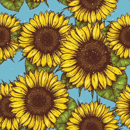 Sunflower vintage seamless pattern. Sunflower retro background. Vector illustration Çizim