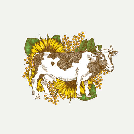 Sunflower and cow print illustration. Country style illustration. Vector illustration Ilustração