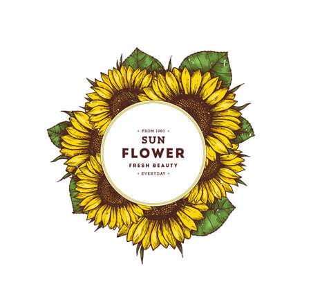 Sunflower vintage design template. Sunflower round composition. Vector illustration