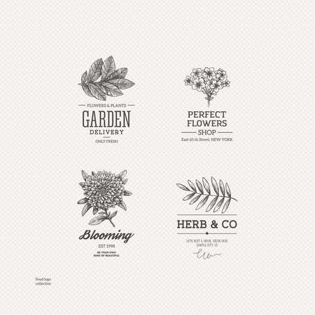 Vintage nature logo collection. Engraved logo set. Vector illustration Illustration