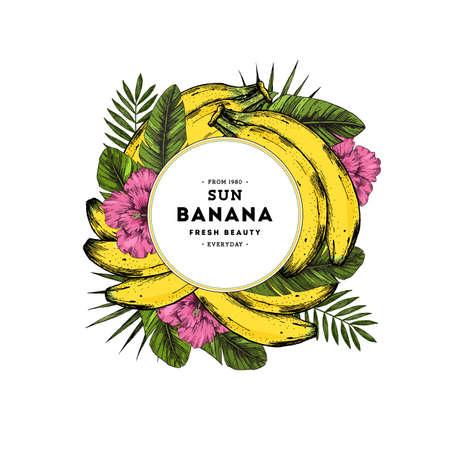 Summer fruit design template. Banana illustration. Vector illustration Ilustração