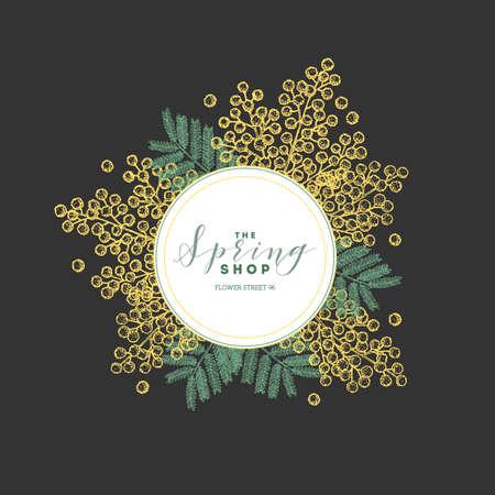 Floral design template. Vintage mimosa greeting card. Vector illustration