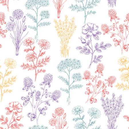 Vintage Hand Drawn Beauty Herbs Seamless Pattern