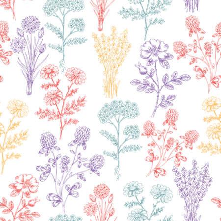 Vintage Hand Drawn Beauty Herbs Seamless Pattern