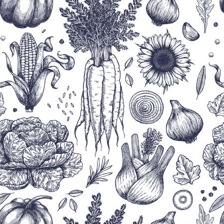 Autumn vegetables seamless pattern. Handsketched vintage vegetables. Line art illustration. Vector illustration  イラスト・ベクター素材