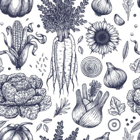 가 야채 원활한 패턴입니다. Handsketched vintage vegetables. 라인 아트 그림입니다. 벡터 일러스트 레이 션 일러스트