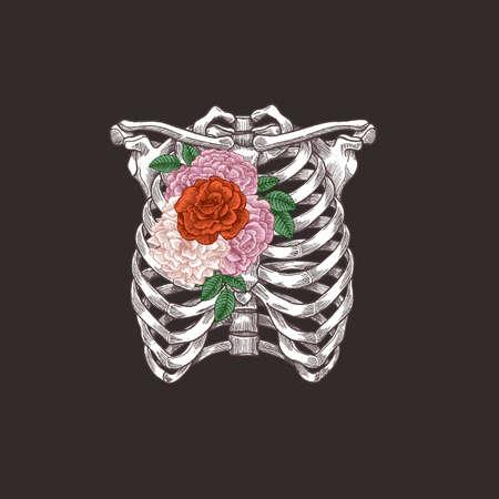 解剖学のビンテージ イラストを入れ墨。花柄胸スケルトン。ベクトル図
