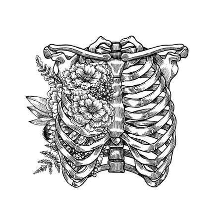 Tattoo anatomy vintage floral illustration. Floral chest skeleton. Vector illustration