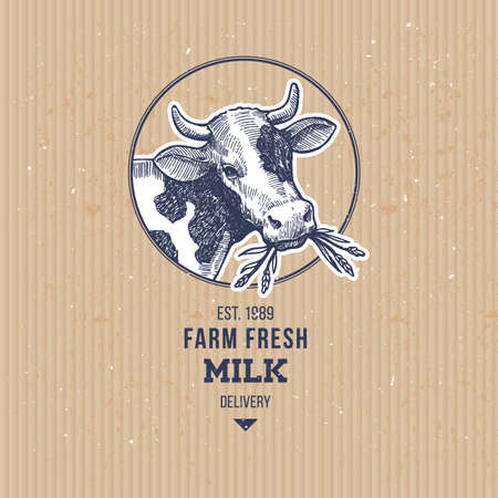 Farm cow vintage logo. Cow illustration design template. Vector illustration