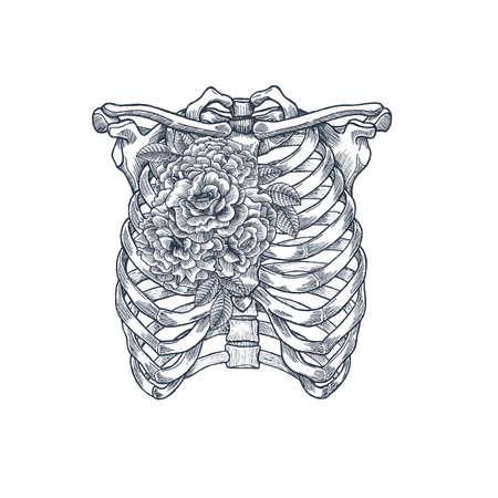 Ilustración de tatuaje anatomía vintage. Esqueleto de Rose chest Ilustración vectorial