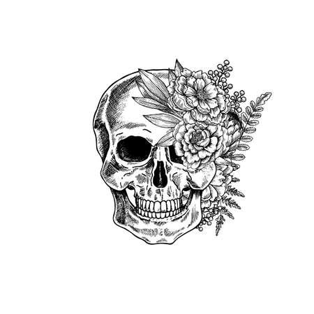 Vintage botanical skull illustration. Human skeleton. Vector illustration