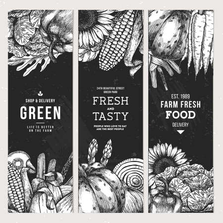 Healthy organic meal vintage vertical banner collection. Fresh vegetables design template. Illustration