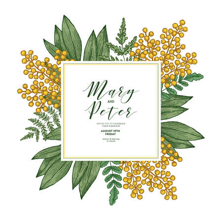 Mimosa flower wedding invitation. Vintage floral design template. Vector illustration