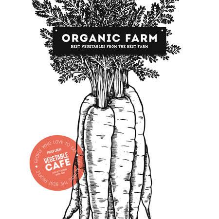 Fresh organic vegetables vintage engraved design template. Botanical carrot illustration. Vector illustration Ilustracja