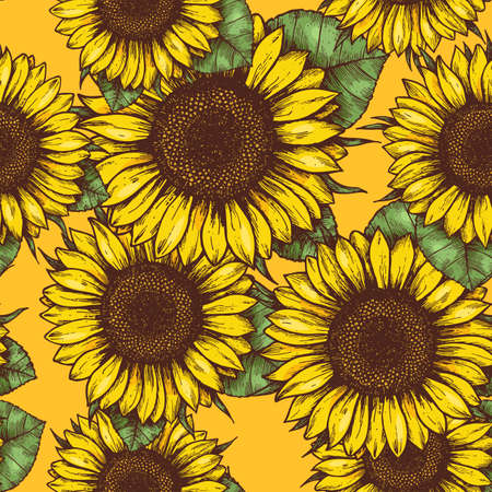 Sunflower seamless pattern. Sunflower fabric background. Vector illustration