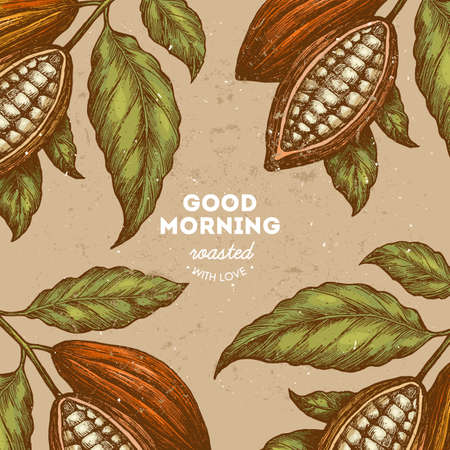 Cocoa bean vintage design template. Engraved style illustration. Chocolate cocoa beans. Vector illustration 向量圖像