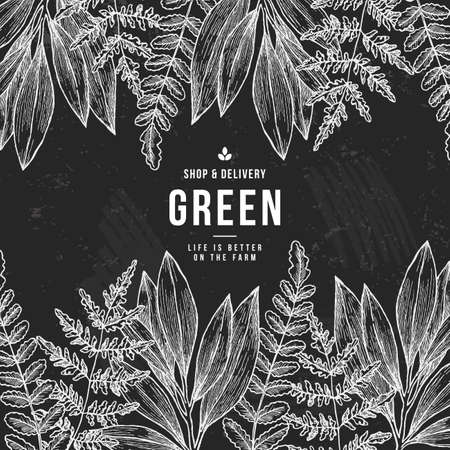 Wild leaves design template. Vintage floral tropical background. Vector illustration