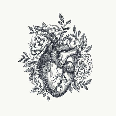 Valentines day card. Anatomical heart with flowers. Vector illustration. Çizim