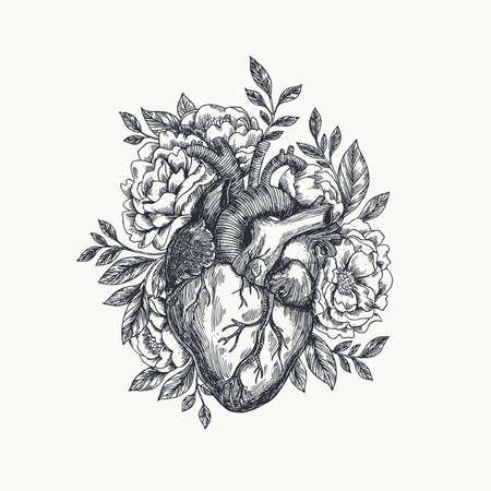 Valentinstag-Karte . Anatomische Herzen mit Blumen . Vektor-Illustration Standard-Bild - 95087326