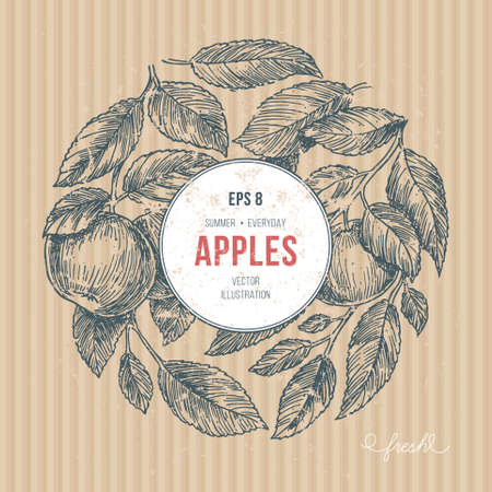 Apple tree design template, apple leaf engraved vector illustration. Illustration