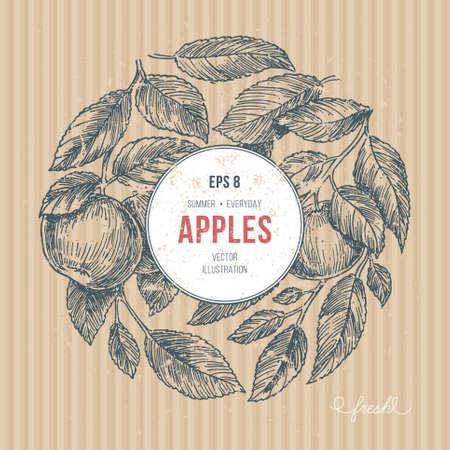 Apple tree design template, apple leaf engraved vector illustration. Vectores