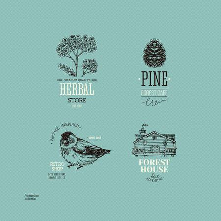 Vintage logo collection. Engraved logo set. Vector illustration