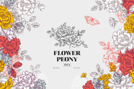 Vintage peony flower background. Flower design template. Vector illustration Archivio Fotografico - 95160831
