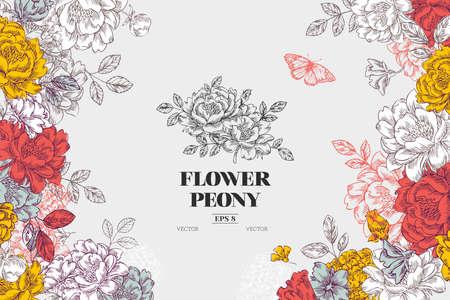 Vintage peony flower background. Flower design template. Vector illustration
