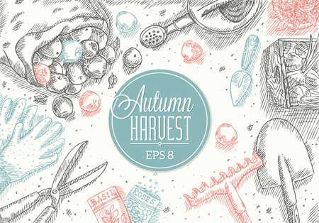 Autumn Harvest Frame