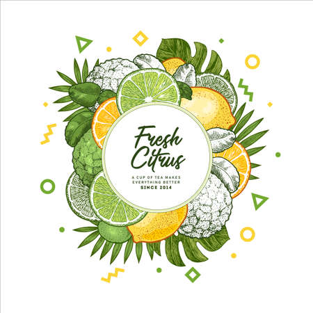Fresh citrus design template. Engraved style illustration. Organic fruits packaging design. Vector illustration Illustration
