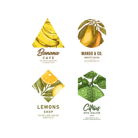 Fresh fruit logo collection. Engraved logotype set. Tropical fruit beauty salon symbols. Vector illustration