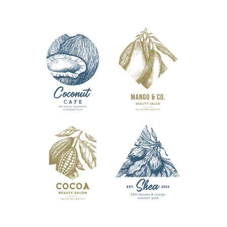 Tropical fruit logo collection. Engraved logotype set. Coconut, mango, cocoa, shea.