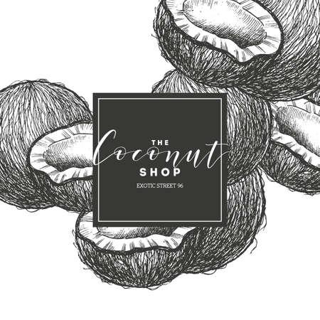 Coconut engraved illustration. Coconut shop design template. Vector illustration