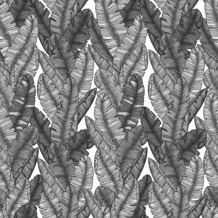 Banana leaf seamless pattern. Stylish minimalist exotic background. Vector illustration Illustration