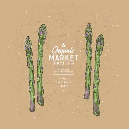 Colored asparagus design template. Organic vegetables. Vector illustration 일러스트