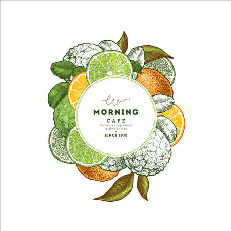 Fresh citrus design round template. Engraved style illustration. Organic fruits. Vector illustration