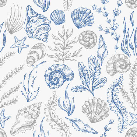 Sea shells seamless pattern. Vintage seashell vector illustration.  Vector illustration  イラスト・ベクター素材