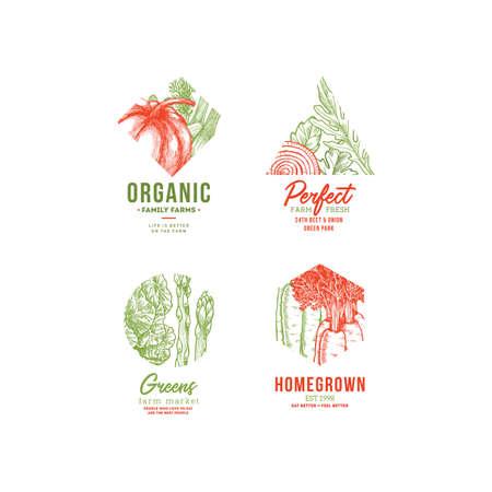 Vegetables vintage logo collection. Engraved logotype set.  Vector illustration