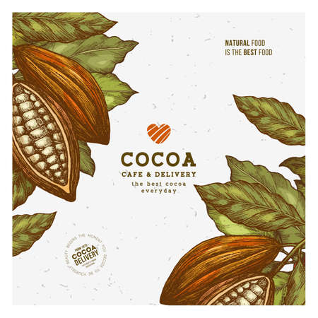 Cocoa design template. Engraved style illustration. Chocolate cocoa beans. Vector illustration