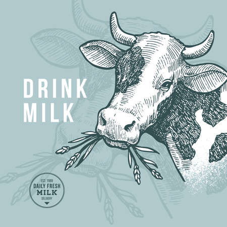 Farm cow design template. Milk delivery. Cow illustration. Vector illustration